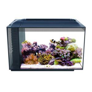Fluval Sea Evo 13.5 reef saltwater tank 12 gallon